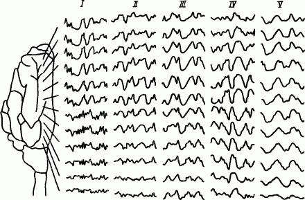 Основы физиологии высшей нервной деятельности p_056_1.png