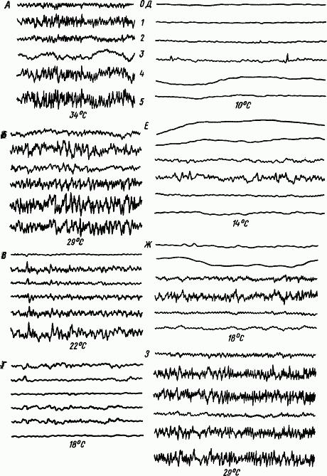 Основы физиологии высшей нервной деятельности p_063_1.png