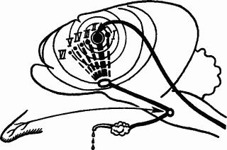 Основы физиологии высшей нервной деятельности p_066_1.png