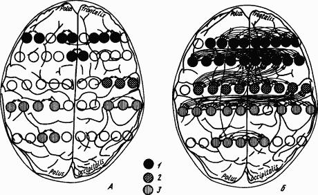 Основы физиологии высшей нервной деятельности p_169_1.png