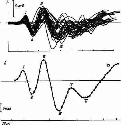 Основы физиологии высшей нервной деятельности p_170_1.png