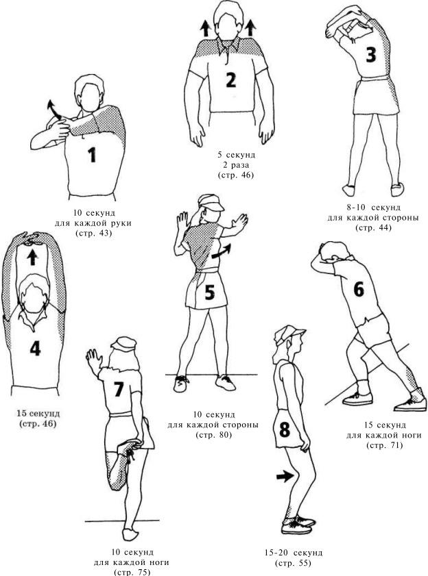 ракушки разных упражнения после бега с картинками следующие лепестки