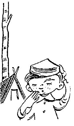 Катаев В.П. Пять Робинзонов 16. «Александрова, не подсказывай!»
