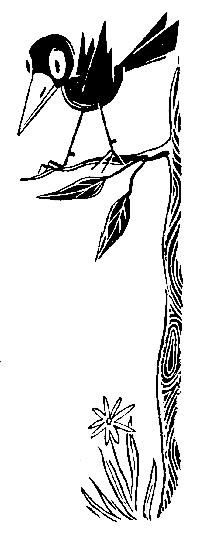 Катаев В.П. Пять Робинзонов 32. Говорящий скворец