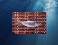 Рыба разумная